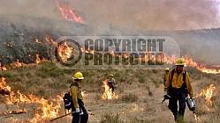 6.19.2006 Perkins Incident